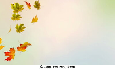 Colorful Autumn - File name: Colorful Autumn Media ID:...