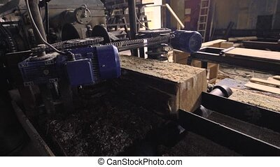 View of cutting machinery at saw mill - Woodworking...