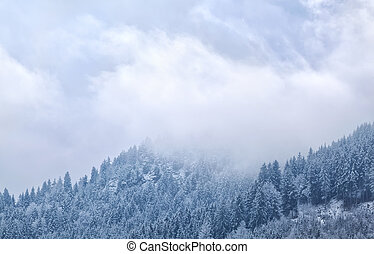 fog in winter mountains