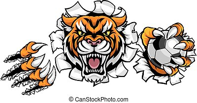 Tiger Holding Soccer Ball Breaking Background - A Tiger...