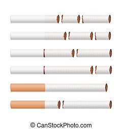 Broken Cigarettes Vector. Smoking Kills. Medical Healthcare Quit Smoking Concept. Tobacco Leaves. Realistic Illustration. Isolated On White.