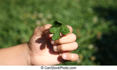 The child's hand holds a four-leafed clover against the...