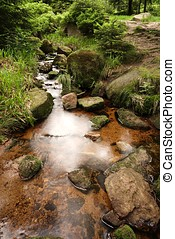 Harz National Park - Mountain stream in Schierke at the foot...