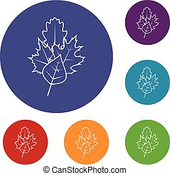 Leaves icons set in flat circle reb, blue and green color...