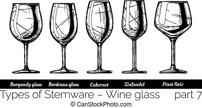illustration of Stemware types - Types of red wine glass....