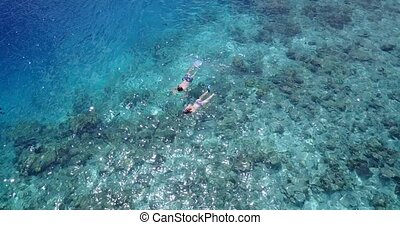 v04051 Aerial flying drone view of Maldives white sandy beach 2 people young couple man woman snorkeling swimming diving on sunny tropical paradise island with aqua blue sky sea water ocean 4k