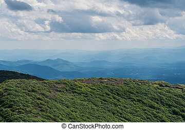 Wide View of Craggy Gardens in Spring Along the Blue Ridge...