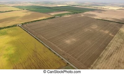 Aerial shot of a well-groomed and multicolored field,...
