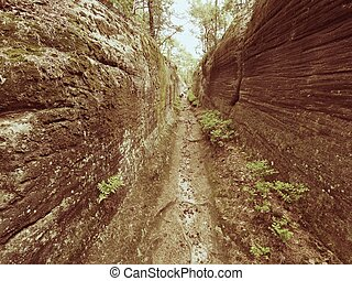 Deep entrance path in sandstone block. Historical path...