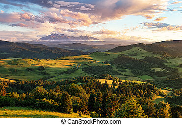 Beautiful summer landscape in mountains - Pieniny / Tatras,...