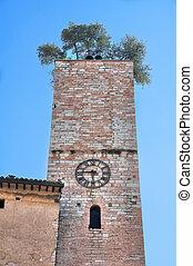 Historic tower. Spello. Umbria.