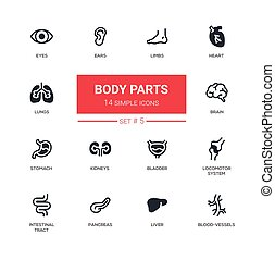 Body parts - Modern simple thin line design icons,...