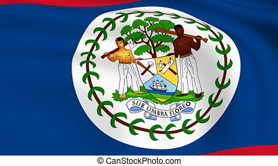 Flying Flag of Belize | LOOPED |