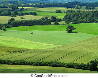 agrarian landscape with tractor