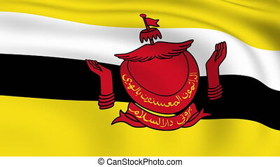 Flying Flag of Brunei | LOOPED |