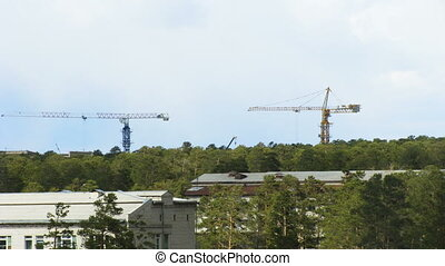 Timelapse of two working tower cranes