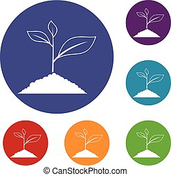 Growing plant icons set
