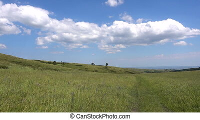 Yellow-green hill and sky with clouds. Wild grasses. Mixed...