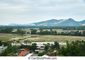 Rice fiels from a high angle view with mountains in the...