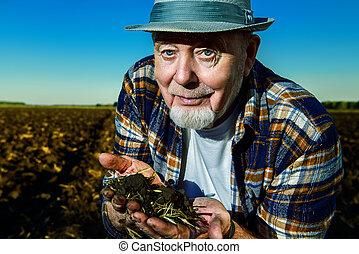fertile black soil - An elderly farmer holds a handful of...
