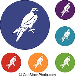 Falcon icons set in flat circle reb, blue and green color...