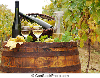 vineyard with white wine and bottles
