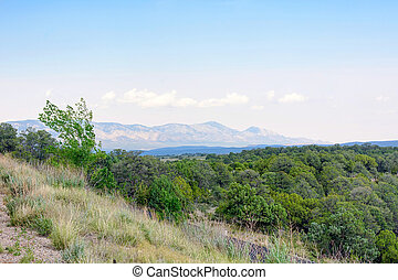 Beatiful daylight view to mountains and green forest in...