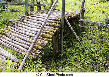 Old wooden bridge in the forest, on the background of green...