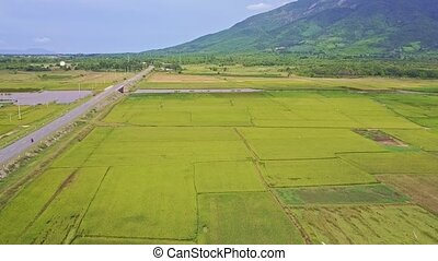 Camera Moves above Rice Fields by Road to Hills - camera...