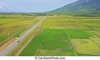 Drone Follows Car Driving along Road among Rice Fields -...