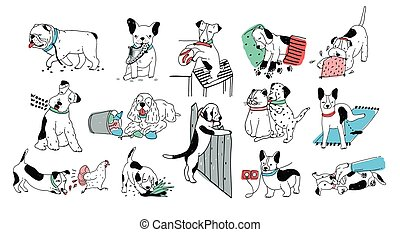 Set of problem with bad dog behaviour collection. Silly...