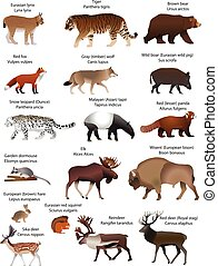 Animals of Eurasia - Collection of different species of...