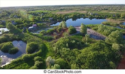 Aerial shot of small lakes and reedbeds with a lot of cane, and rush in Ukraine