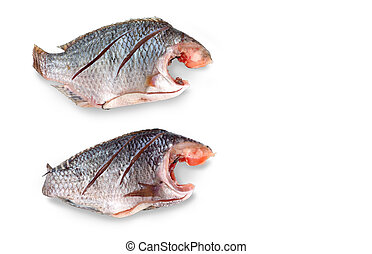 Two Nile Tilapia raw fish isolate and clipping paths - Two...