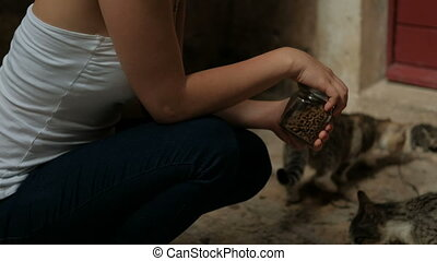 Woman squatting near entrance feeding cats outdoors. Female...