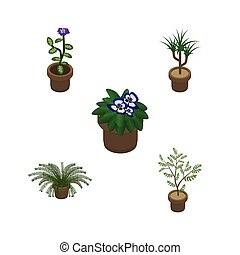 Isometric Houseplant Set Of Plant, Fern, Flowerpot And Other Vector Objects. Also Includes Houseplant, Flowerpot, Fern Elements.