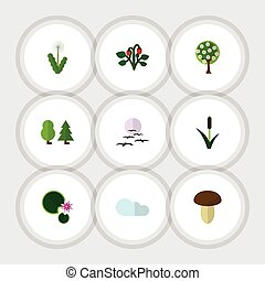 Flat Icon Natural Set Of Forest, Tree, Lotus And Other...
