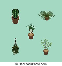 Isometric Houseplant Set Of Houseplant, Plant, Fern And Other Vector Objects. Also Includes Cactus, Flower, Peyote Elements.