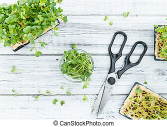 Portion of Cutted Cress - Portion of fresh Cutted Cress...