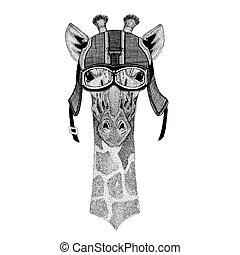 Camelopard, giraffe wearing motorcycle helmet, aviator...