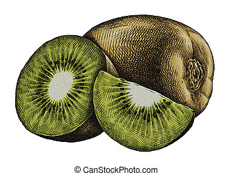 Engrave isolated kiwi hand drawn graphic illustration -...
