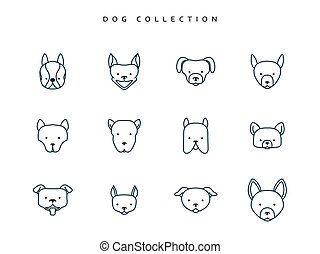 Set dogs in linear style. 12 face breeds puppy. Vector...