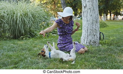 Woman playing with dog on grass - Woman who trains and...
