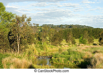 Running Stream - The Wingecarribee River, flowing through...