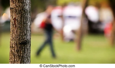 Blurred Man Walking Behind Sharp Clear Bark Tree - Blurred...