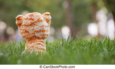 Plush Cat Toy in Green Grass - Plush cat toy in green grass....