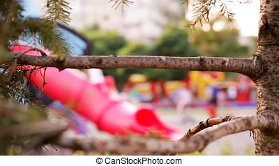 Fir Tree Branch Guarding Blurry Playground - Fir tree branch...