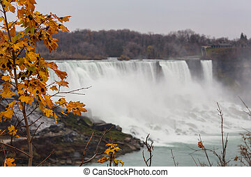 Niagara waterfall in autumn season