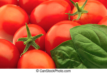 Tomatoes and a basil close up