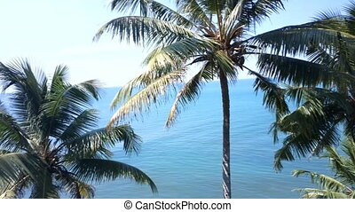 Vacation in tropics. Nice view from hotel window to quiet...